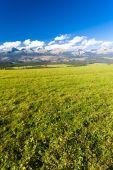 Western part of Vysoke Tatry (High Tatras), Slovakia — Stockfoto