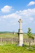 Cross with vineyard near Nemcicky — Zdjęcie stockowe