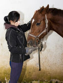 Equestrian feeding the horse — Stock fotografie