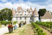 Castillo de monbazillac con viñedo, aquitania, francia — Foto de Stock