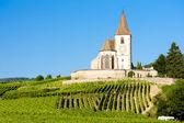 Iglesia con viñedo, hunawihr, alsacia, francia — Foto de Stock