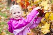 Little girl in autumnal vineyard — Foto de Stock