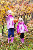 Little girls in autumnal vineyard — Stock Photo
