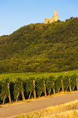 Castle Ortenbourg, Alsace, France — Stock Photo