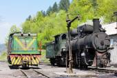 Locomotives, delivery point in Oskova, Bosnia and Hercegovina — Stock Photo