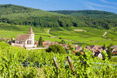 Hunawihr, Alsace, France — Stock Photo