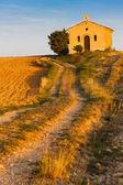 Kaple s levandule pole — Stock fotografie