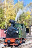 Steam locomotive, Johstadt, Germany — Stock Photo