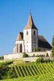 Eglise avec vignoble, hunawihr, alsace, france — Photo