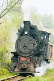 Narrow gauge railway, Banovici — Stock Photo