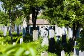 犹太公墓 Miroslav — 图库照片