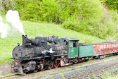 Narrow gauge railway, Banovici, Bosnia and Hercegovina — Stock Photo