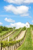 God''s torture near Hnanice with spring vineyard — Stock Photo