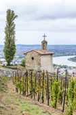 Grand cru vineyard and Chapel of St. Christopher, L'Hermitage, R — Stock Photo