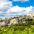 Ruins of castle in Vaison-la-Romaine with vineyard, Provence — Stock Photo #71953407