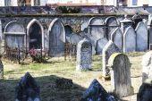 Jewish cemetery, Hermanuv Mestec, Czech Republic — Stock Photo