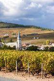 Chenas 与葡萄园,薄酒莱,法国罗纳-阿尔卑斯大区 — 图库照片