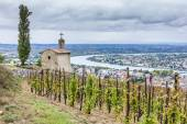 Grand cru vineyard and Chapel of St. Christopher, L'Hermitage — Stock Photo