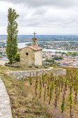 Grand cru vineyard and Chapel of St. Christopher — Stock Photo