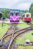 Narrow gauge railway, Nova Bystrice — Stock Photo
