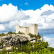 Ruins of castle in Vaison-la-Romaine with vineyard, Provence, Fr — Stock Photo #78958306