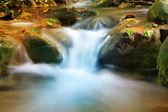 ницца каскад горный ручей — Стоковое фото