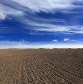 Omgeploegde veld — Stockfoto