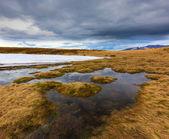 Flooded meadow in Carpathians — Stock Photo