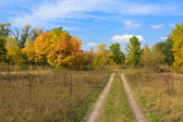 Rut road among autumn meadow — Stock Photo