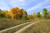 Droga na jesień łąka — Stockfoto