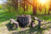 Wooden table and seats in forest — Stock Photo