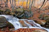 Mountain river in autumn time — Stock Photo