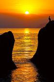 Evening scene on sea — Stock Photo