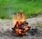 Hot flame of campfire — Stock Photo