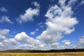 Nice sky with clouds — Stock Photo