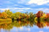 Nice autumn scene on lake — Stock Photo