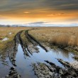 Dirt road in steppe — Stock Photo #68263199