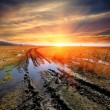 Dirt road in steppe on sunset background — Stock Photo #69247179