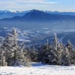 Mountain winter scene — Stock Photo #72443015