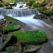 Green stones in water of mountain stream — Stock Photo #72450047