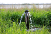 Water source on meadow in steppe — Stock Photo