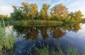 Morning scene on river — Stock Photo