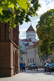 Cathedral of the Theotokos in Vilnius, Lithuania — Stock Photo