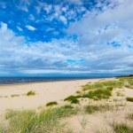 Baltic sea coast in Jurmala — Stock Photo #56794401