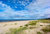 Baltic sea coast in Jurmala — Stock Photo