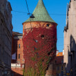 Riga Powder Tower — Stock Photo #58803819