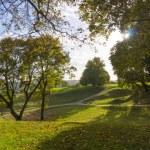 Kernave landscape at summer. — Stock Photo #59645555
