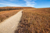 Pathway into the Prairie — Stock Photo
