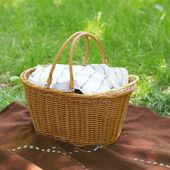 Picnic basket on the plaid — Stock Photo