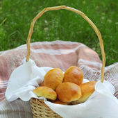 Picnic basket on the grass — Stock Photo